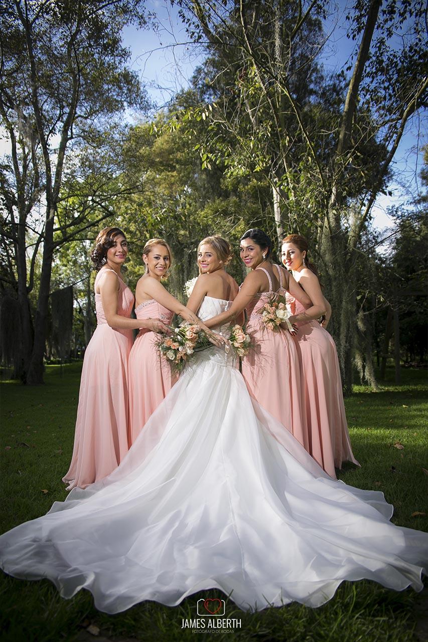 fotografias-de-bodas-vestidos-de-novias-damas-de-honor-fotografias ...
